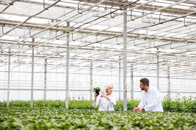 Молодой человек и пожилая женщина работает с растениями