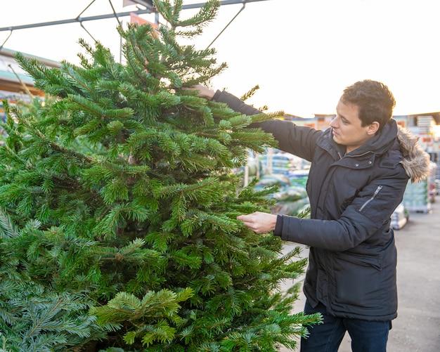 若い男は、市場でクリスマスツリーを選択します。
