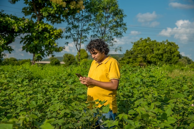 Young man farmer in a cotton farm talking or using mobile.