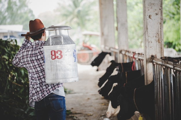 Young man or farmer with bucket walking along cowshed and cows on dairy farm