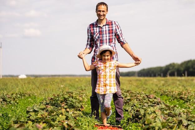 Молодой фермер работает в саду, собирает клубнику для своей дочери-малыша