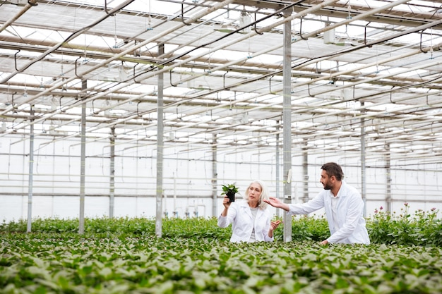 Young man gardener pointing at plant in hands of his colleague