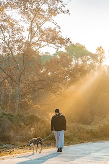 Young man having fun with his dog in nature with the rays of the morning sun love my dog