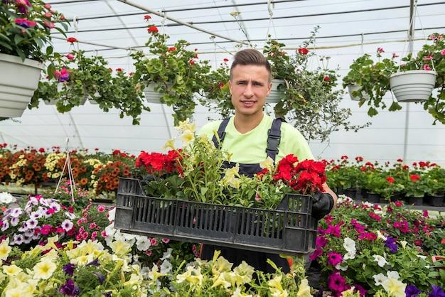 産業温室で働く春の花でいっぱいの箱を保持している若い男。植物学