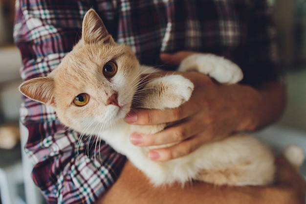 Young man holding a cat in his arms.