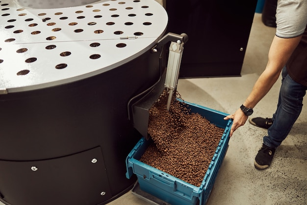 Young man holding plastic container under bean release chute and collecting coffee beans after roasting in special equipment