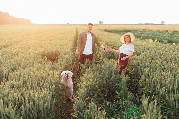 젊은 남자는 하얀 래브라도와 함께 자연 속에서 저녁 산책을 하는 동안 임신한 아내의 손을 잡고 있습니다. 임산부 . 가족과 임신. 사랑과 부드러움. 행복과 평온.