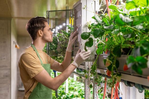 垂直農法で働くエプロンと手袋の若い男