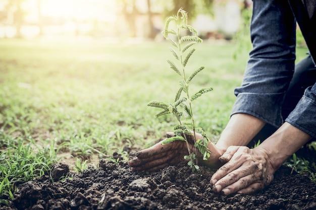 젊은이 지구의 날 정원에서 나무를 심고 세계 개념, 자연을 저장