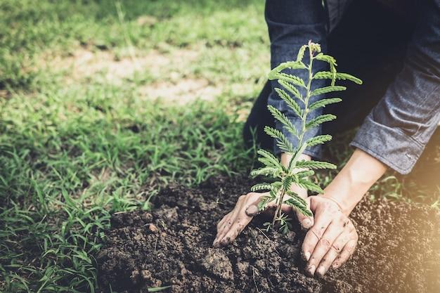 Молодой человек сажает дерево в саду как земной день и спасает концепцию мира