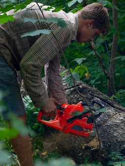 A young man saws with a chainsaw of tree stumps, removed forest stands from old trees