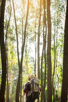 旅行のライフスタイルと生存の概念の背景に夕暮れの自然と屋外の森林で一人で立っている若い男
