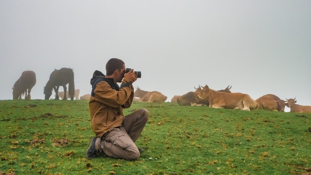 Young man taking photos in a misty  mountain with fog and cows autumn photographer concept