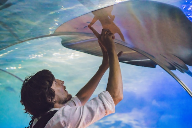Young man touches a stingray fish in an oceanarium tunnel.