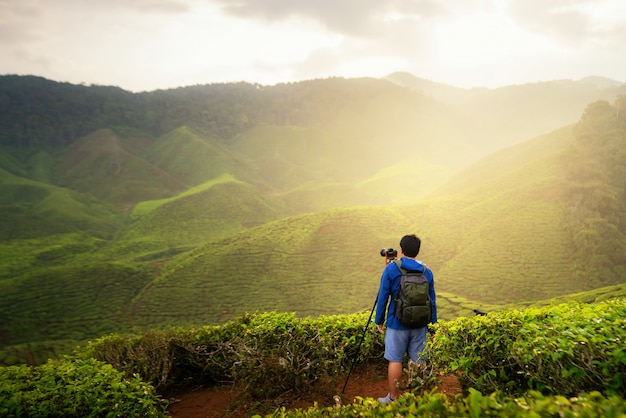 Young man traveler take a photo of mountain tea field, enjoying tea plantations in cameron highlands near kuala lumpur, malaysia