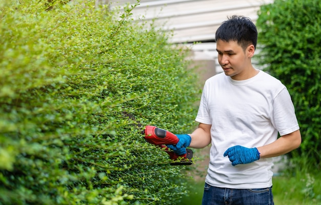 自宅の庭でコードレス電気生垣の切断とトリミングの植物を使用して若い男