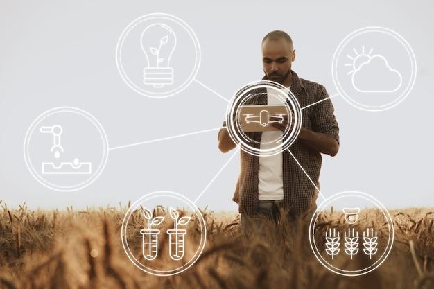 Молодой человек с помощью планшета в пшеничном поле крупным планом, сельскохозяйственная концепция