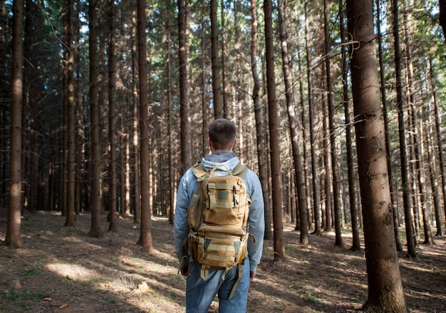 Young man with a backpack from back in the forest