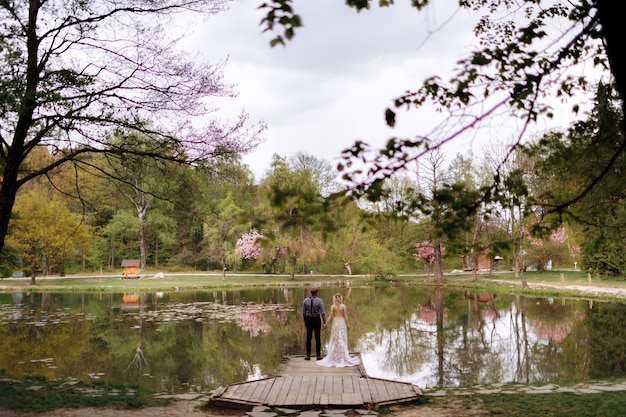 Young man with beard and bride in luxury long dress hugging near lake in park with blooming cherry or sakura blossoms. wedding spring day