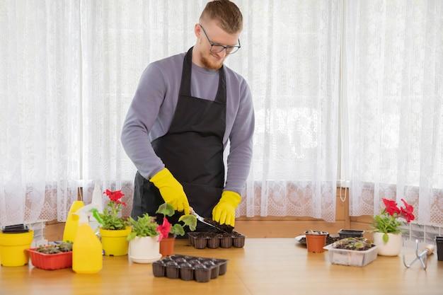 メガネとエプロンの田舎の家の鍋に苗を植えると若い男