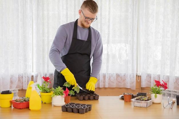 Молодой человек в очках и фартуке в желтых резиновых перчатках сажает саженцы в горшки