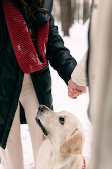 Молодая супружеская пара, взявшись за руки рядом с собакой, сидящей в снегу
