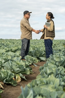 Young and mature farmers shaking hands among growing cabbages