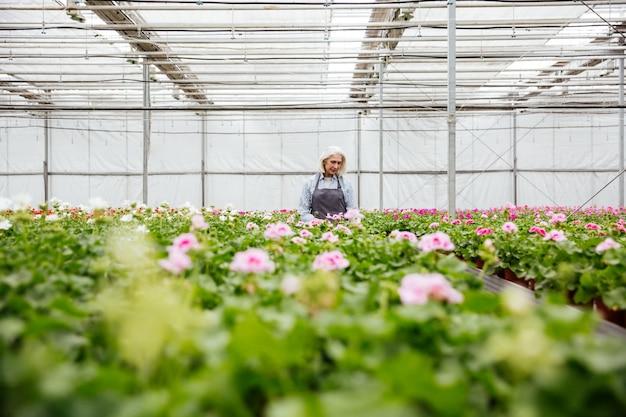 Молодая зрелая женщина работает с растениями в теплице