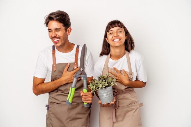 흰색 배경에 격리된 젊은 혼혈 정원사 부부는 웃고 즐겁게 지내고 있습니다.