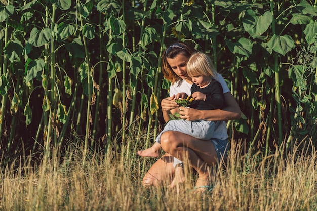 그녀의 아기를 들고 젊은 어머니. 엄마와 어린 딸 해바라기 밭에서 좋은 시간을 보내고. 가족 개념