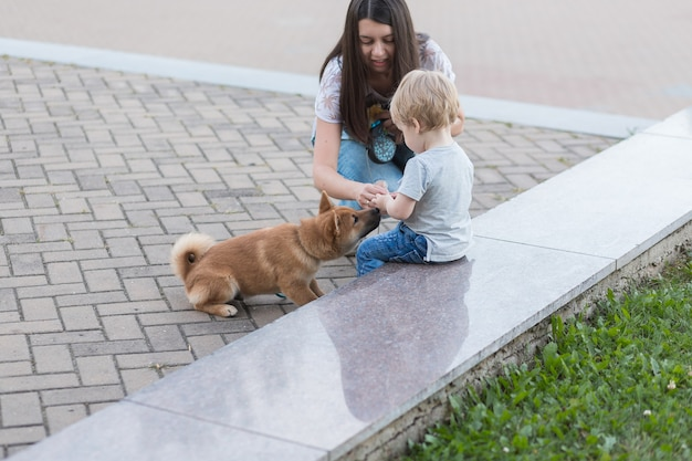 Young mother and little child boy plays with a dog on the grass. puppy shiba inu playing with happy family