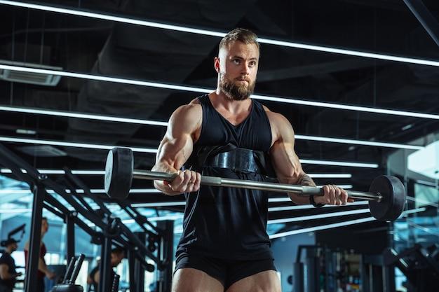 ジムでの若い筋肉アスリートのトレーニング、筋力トレーニング、練習