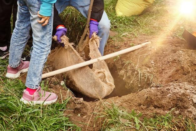 작업복을 입은 젊은이들이 땅에 삽으로 묘목을 심고 있습니다. 영토의 젠트리피케이션 배경. 조경, 자연, 환경 및 생태학의 개념. 복사 공간