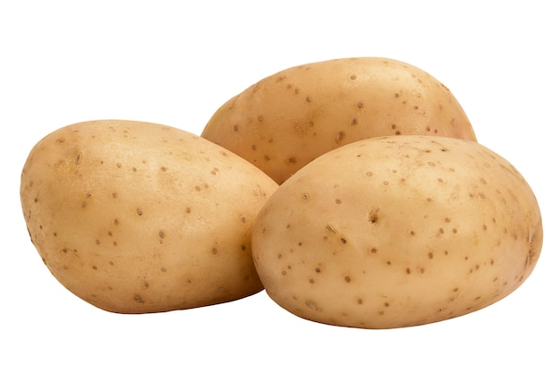Young potato tubers isolated on white background. this year's crop.
