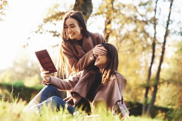 草の上に座っている若いかなりブルネットの双子の女の子。一人は茶色の本を読もうとしている一方、もう一人はぼやけた背景の秋の日当たりの良い公園で姉妹の目を彼女の手で覆っています。