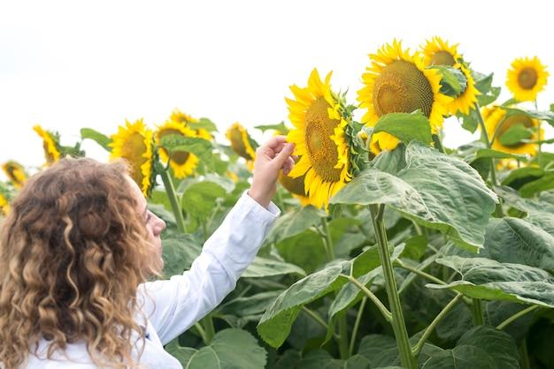 作物の品質をチェックするヒマワリ畑の若いかなり専門的な農学者