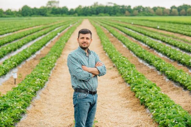 Молодой симпатичный фермер смотрит в камеру, стоя на сельскохозяйственных угодьях со скрещенными руками и клубникой на заднем плане молодой мужской портрет на сельскохозяйственных угодьях