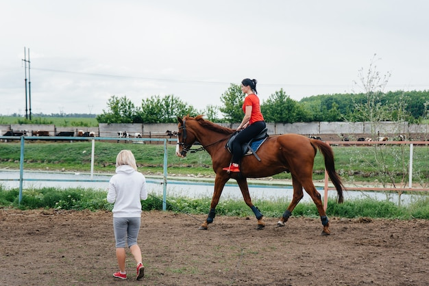A young and pretty girl is learning to ride a thoroughbred mare on a summer day at the ranch. horse riding, training and rehabilitation.