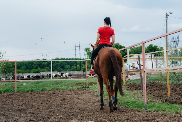 A young and pretty girl is learning to ride a thoroughbred mare on a summer day at the ranch.