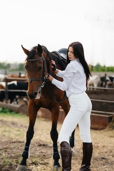 A young pretty girl rider poses near a thoroughbred stallion on a ranch. horse riding, horse racing.