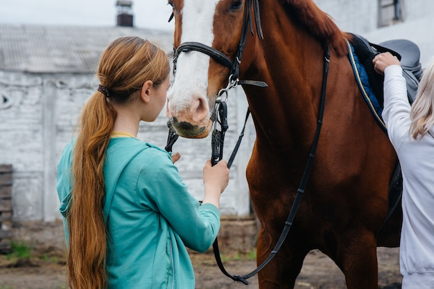 A young and pretty girl stands and holds the reins of a thoroughbred mare on a summer day at the ranch. horse riding, training and rehabilitation. love and care of animals.