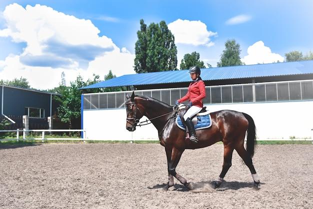 Young pretty jockey girl preparing horse for ride. love horses. girl riding a horse