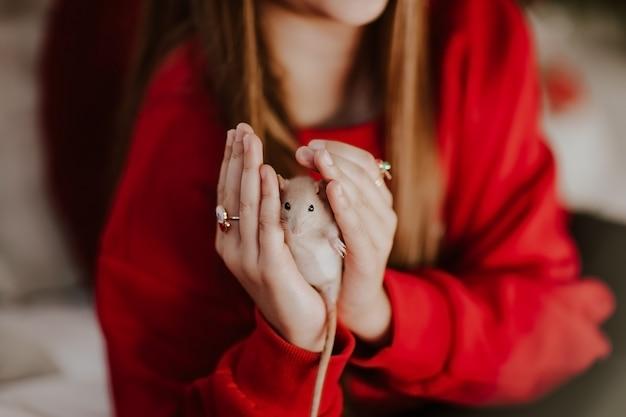 Молодая довольно предназначенная для подростков девушка в красном свитере держа маленькую мышь против рождества.