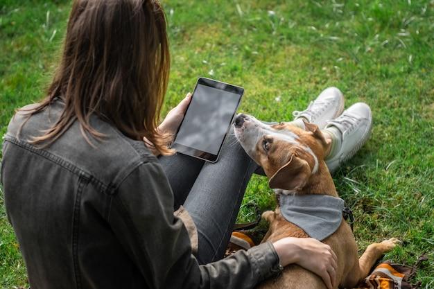 タブレットコンピューターを持つ若いきれいな女性は彼女のかわいい子犬と芝生に座っています。訓練されたスタッフォードシャーテリア犬と公園で屋外でネットサーフィンをする女性の人