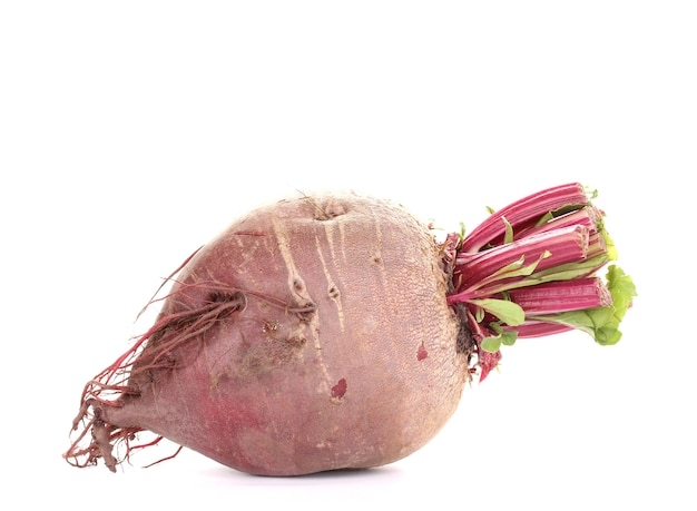 Young red beet on white