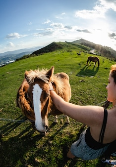 Рыжая молодая женщина гладит коричневую лошадь