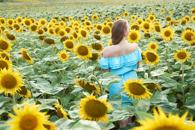 Young redhead woman with braided hairstyle in summer sunflower field