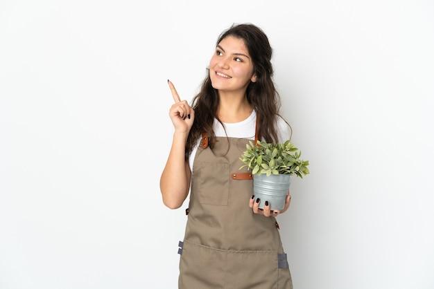 좋은 아이디어를 가리키는 고립 된 식물을 들고 젊은 러시아 정원사 소녀