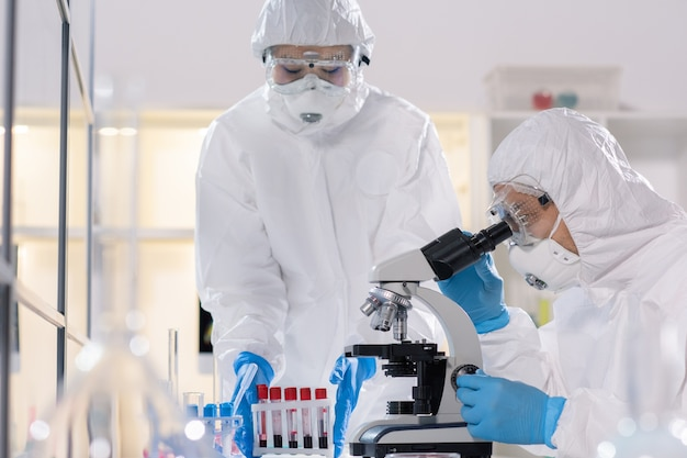 Young scientist in protective workwear looking in microscope while studying new virus with colleague in medical laboratory