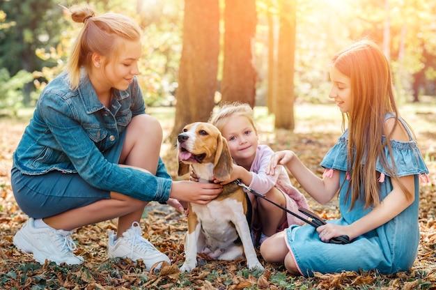 公園でビーグル犬と遊ぶ若い姉妹